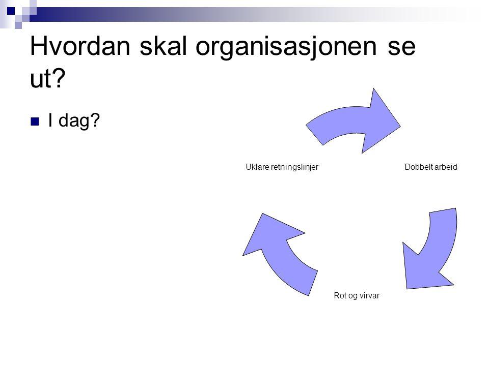 Hvordan skal organisasjonen se ut