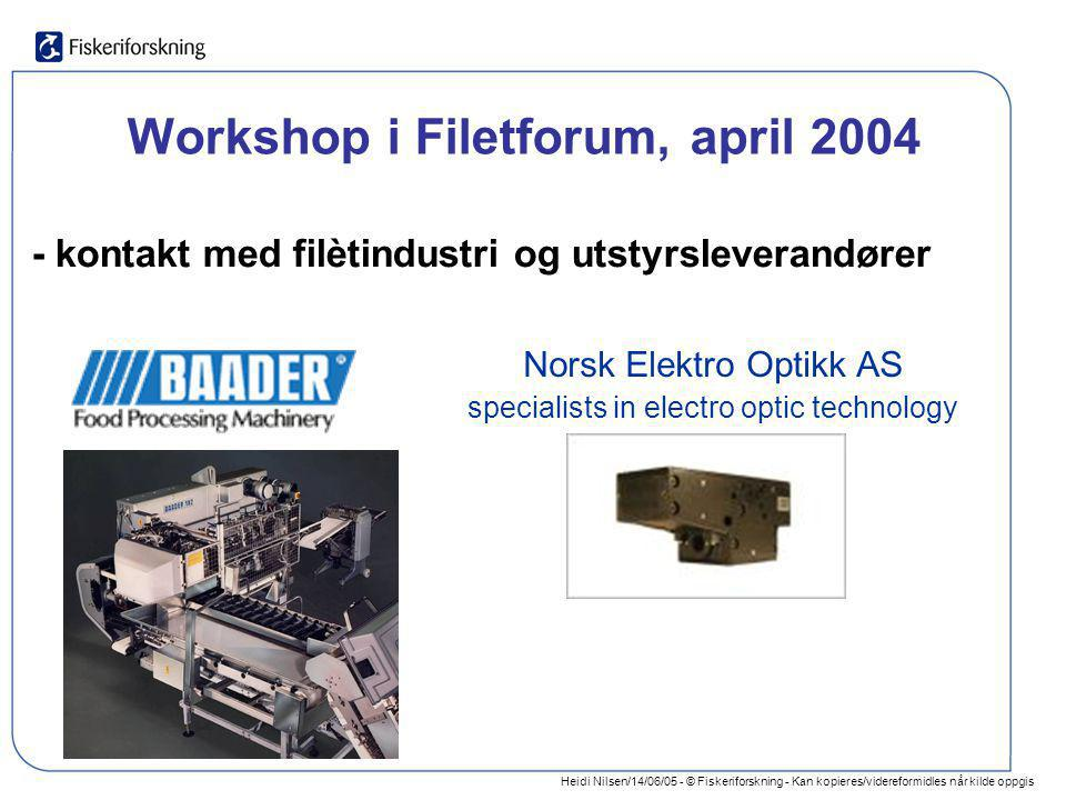 Workshop i Filetforum, april 2004