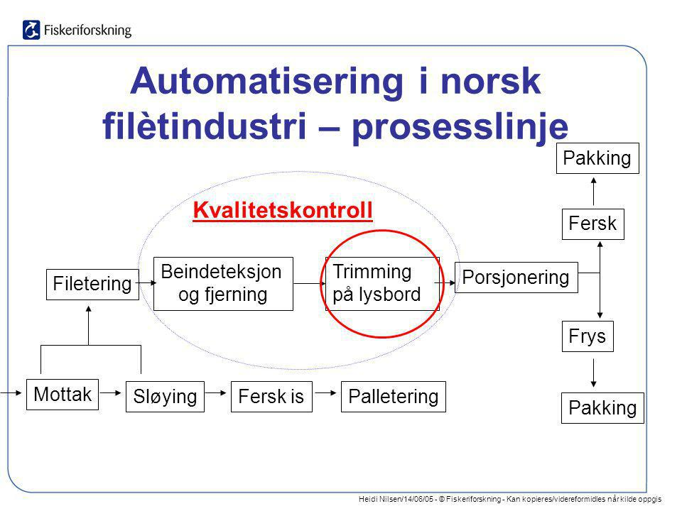 Automatisering i norsk filètindustri – prosesslinje