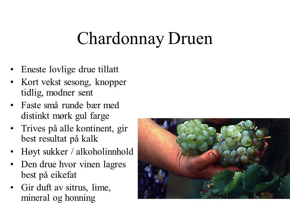 Chardonnay Druen Eneste lovlige drue tillatt