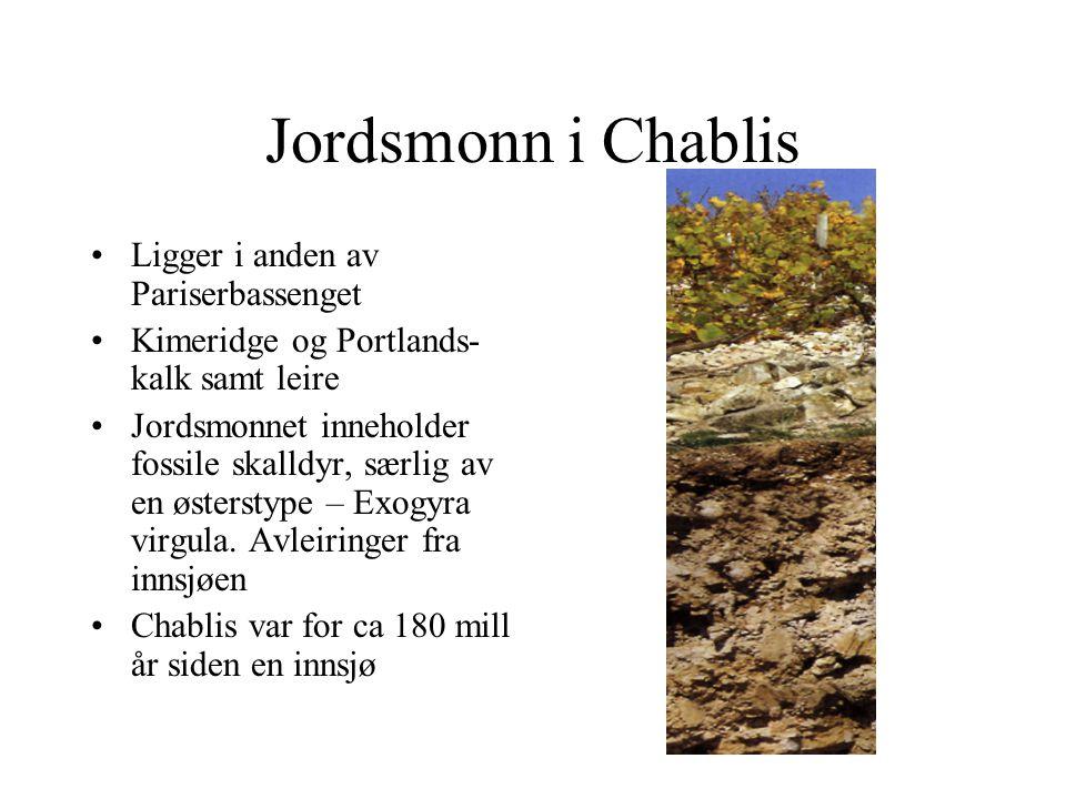Jordsmonn i Chablis Ligger i anden av Pariserbassenget