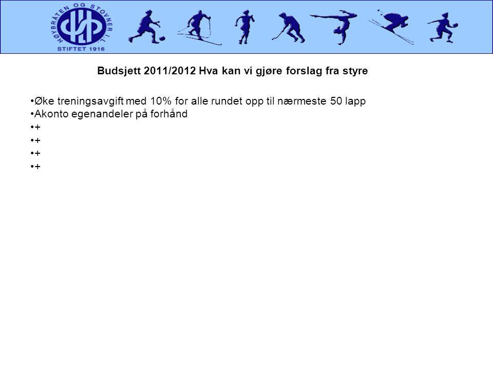 Budsjett 2011/2012 Hva kan vi gjøre forslag fra styre
