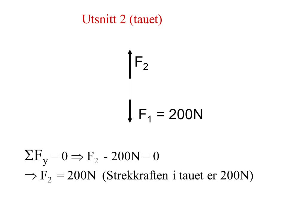  Fy = 0  F2 - 200N = 0 F2 F1 = 200N Utsnitt 2 (tauet)