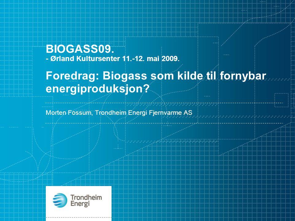Morten Fossum, Trondheim Energi Fjernvarme AS
