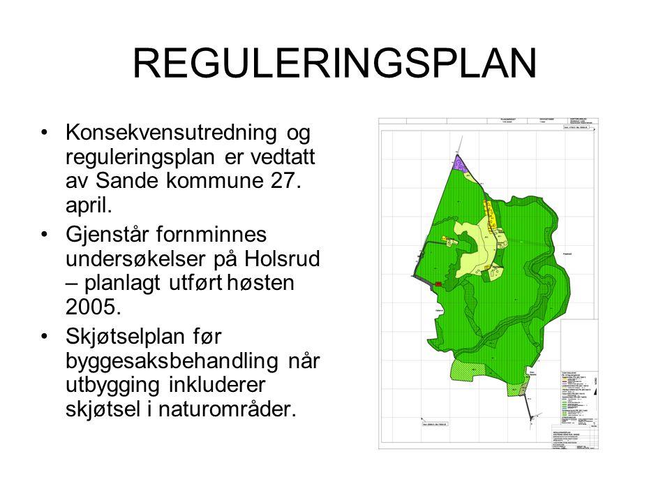 REGULERINGSPLAN Konsekvensutredning og reguleringsplan er vedtatt av Sande kommune 27. april.