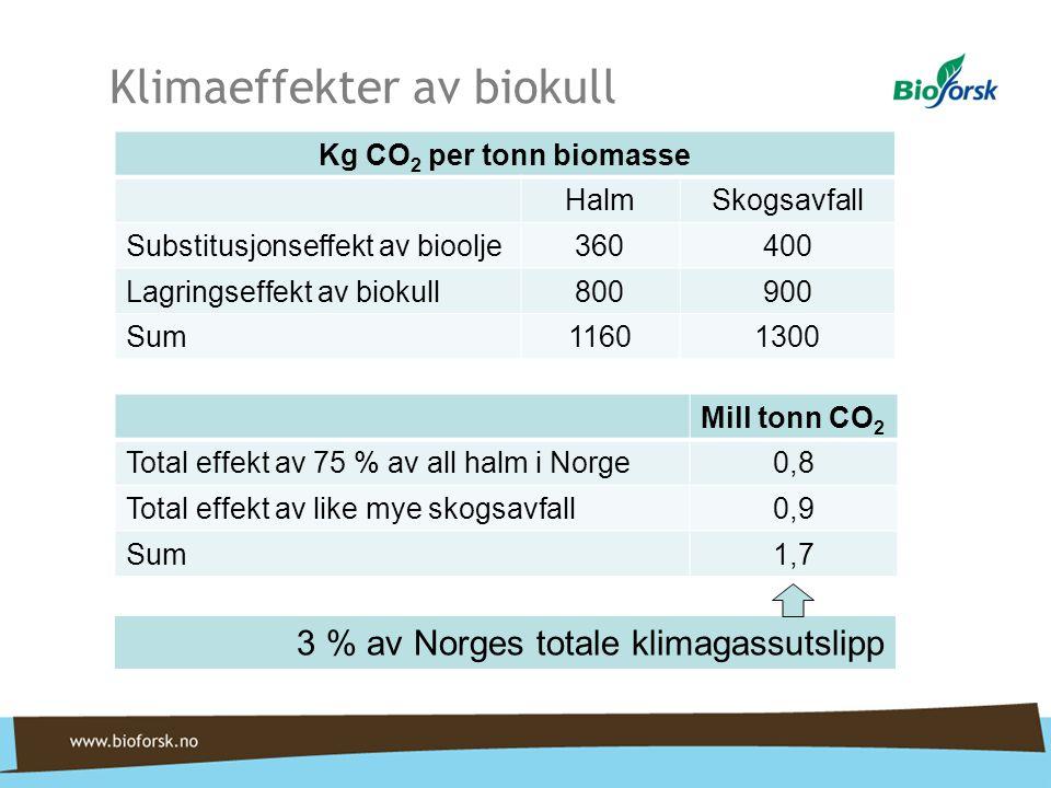 Klimaeffekter av biokull