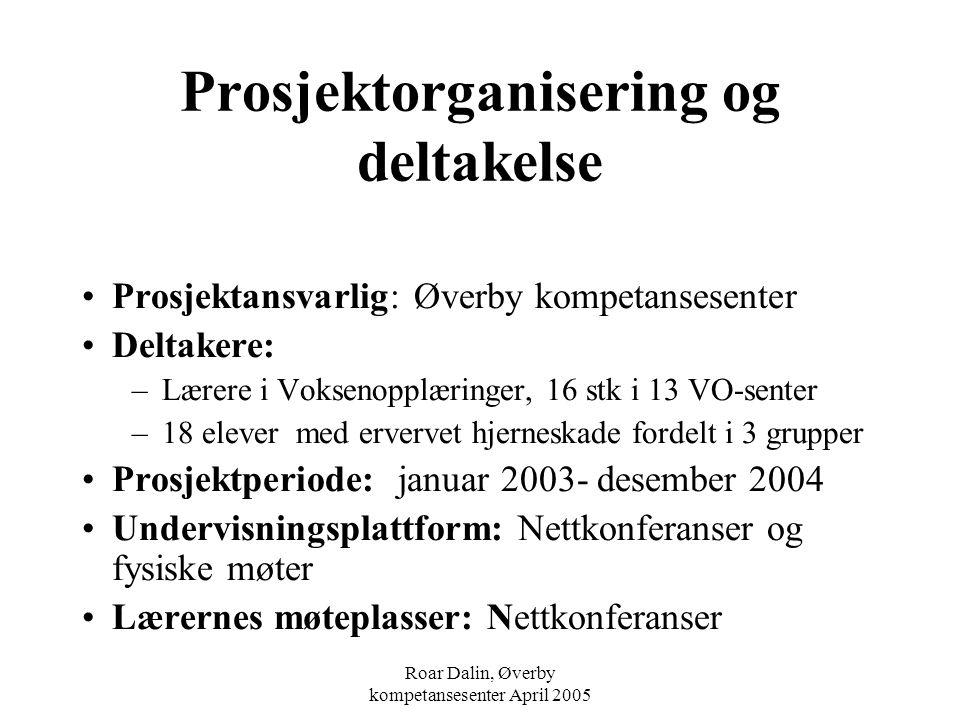 Prosjektorganisering og deltakelse