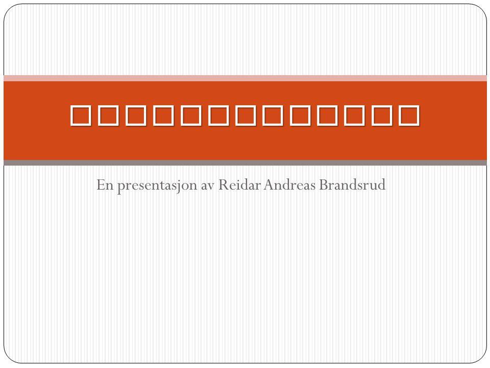 En presentasjon av Reidar Andreas Brandsrud