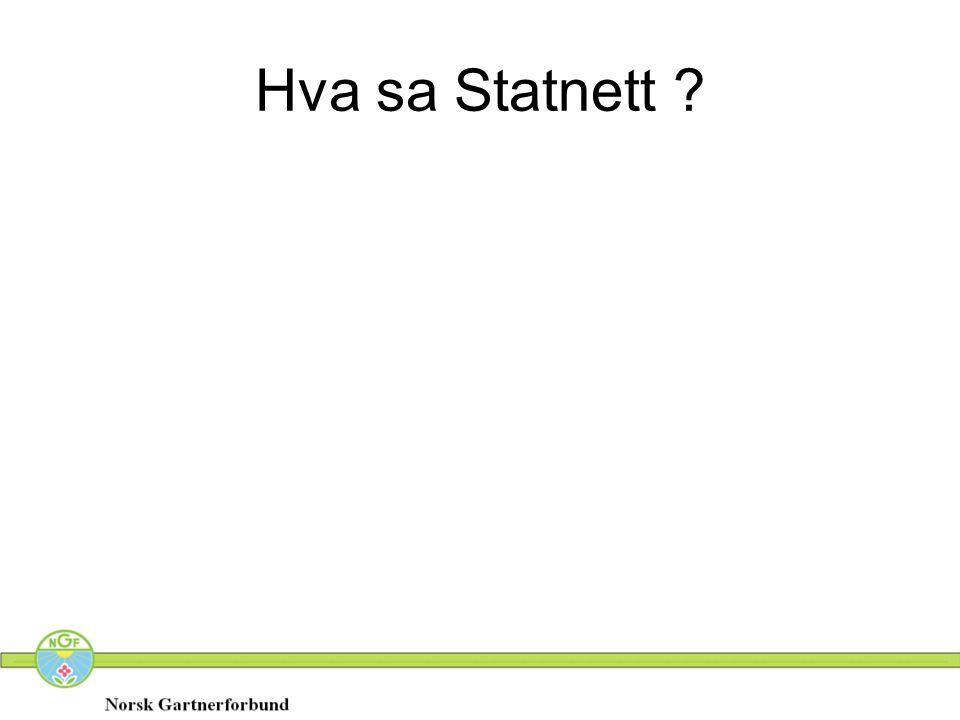 Hva sa Statnett
