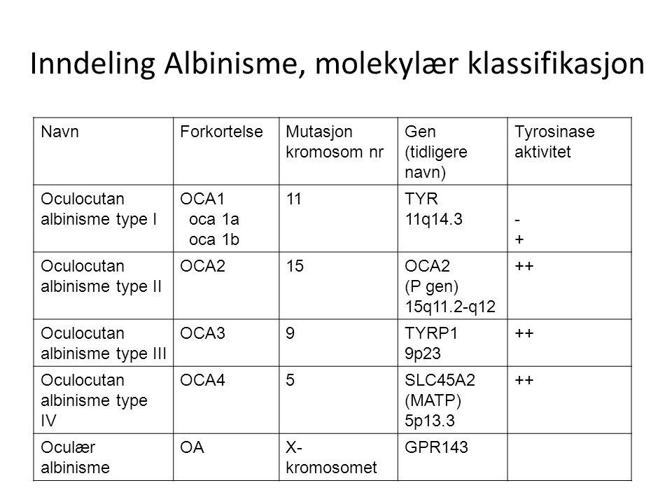 Inndeling Albinisme, molekylær klassifikasjon