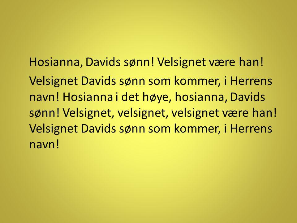 Hosianna, Davids sønn. Velsignet være han