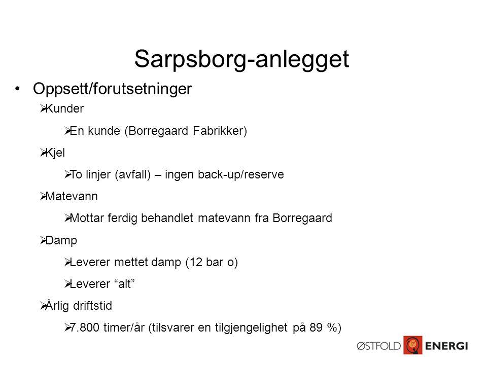 Sarpsborg-anlegget Oppsett/forutsetninger Kunder