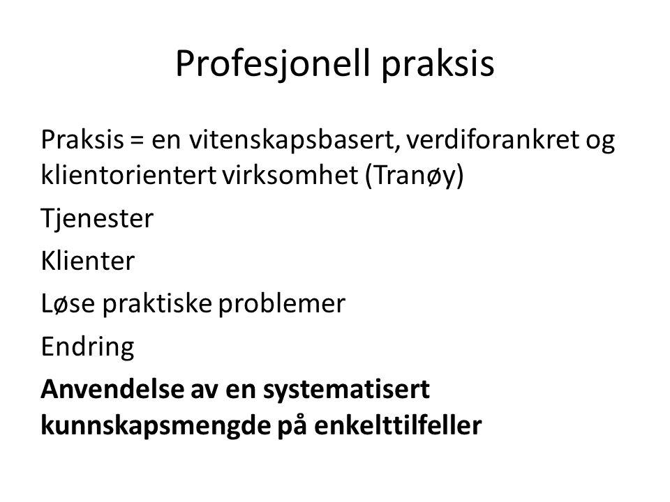 Profesjonell praksis