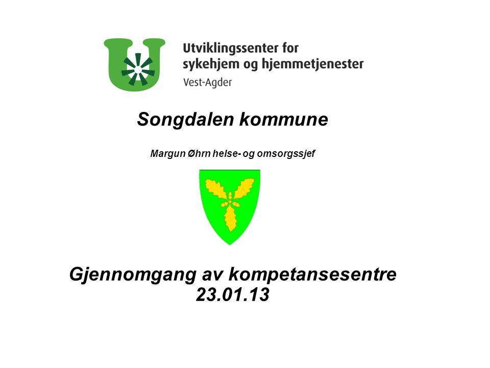 Songdalen kommune Gjennomgang av kompetansesentre 23.01.13