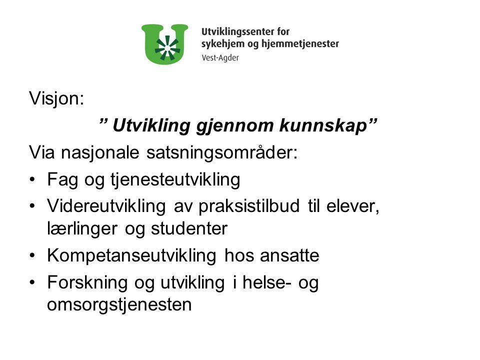 Visjon: Utvikling gjennom kunnskap Via nasjonale satsningsområder: Fag og tjenesteutvikling.
