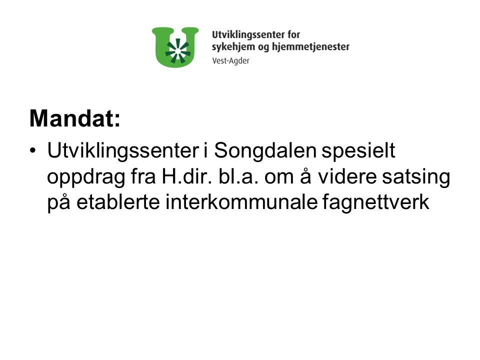 Mandat: Utviklingssenter i Songdalen spesielt oppdrag fra H.dir.
