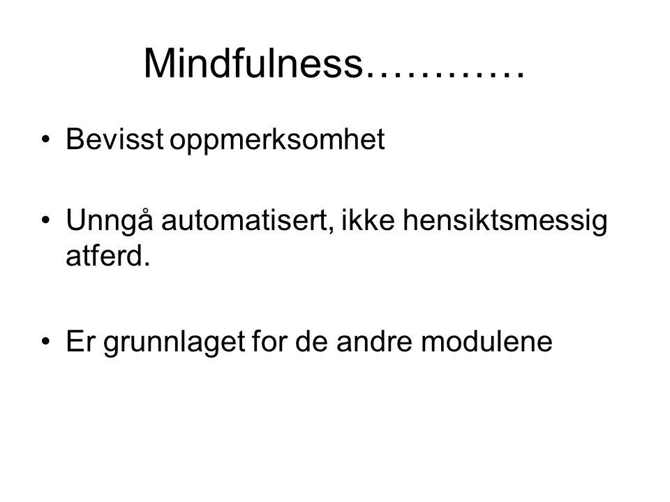 Mindfulness………… Bevisst oppmerksomhet