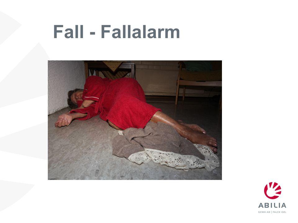Fall - Fallalarm