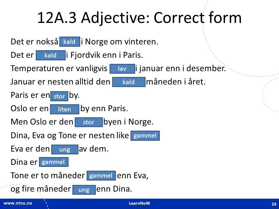 12A.3 Adjective: Correct form