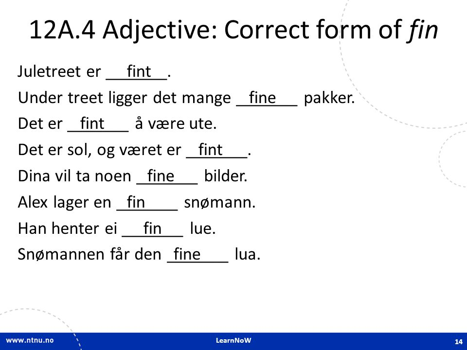 12A.4 Adjective: Correct form of fin