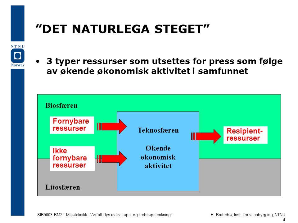 DET NATURLEGA STEGET