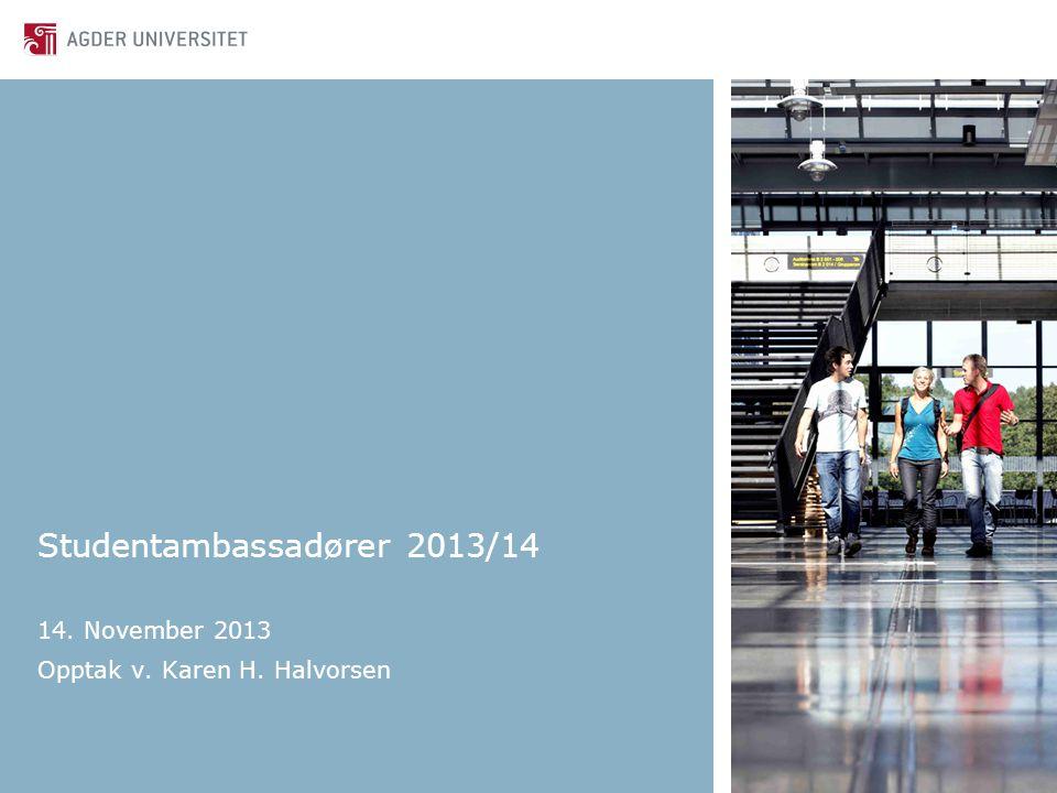 Studentambassadører 2013/14