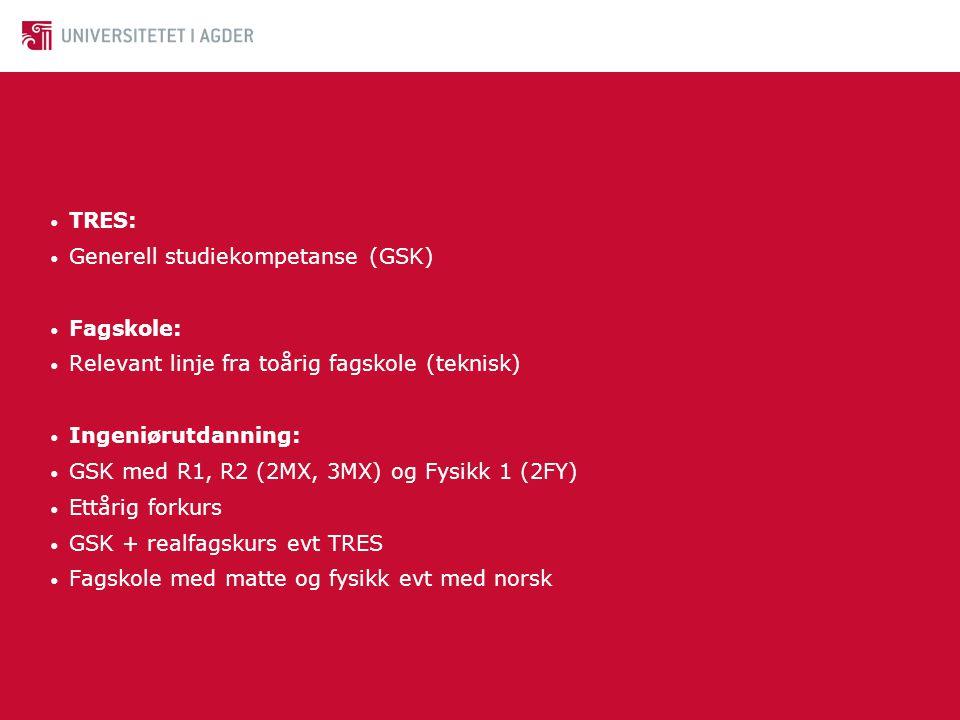 TRES: Generell studiekompetanse (GSK) Fagskole: Relevant linje fra toårig fagskole (teknisk) Ingeniørutdanning: