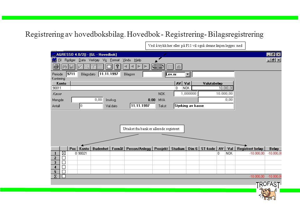 Registrering av hovedboksbilag