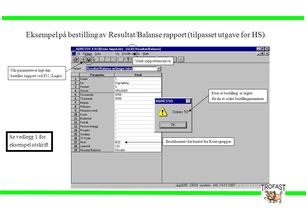 Eksempel på bestilling av Resultat/Balanse rapport (tilpasset utgave for HS).