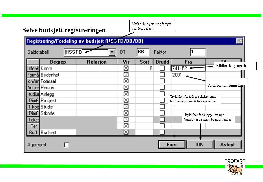 Selve budsjett registreringen
