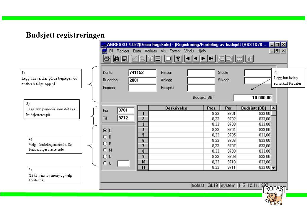 Budsjett registreringen