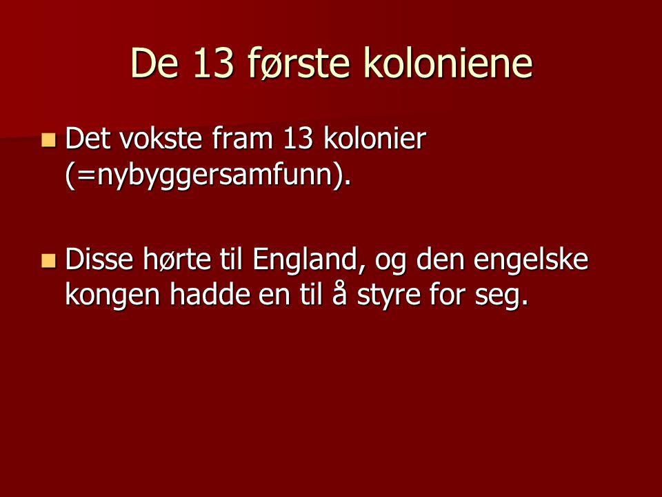 De 13 første koloniene Det vokste fram 13 kolonier (=nybyggersamfunn).