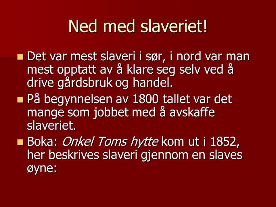 Ned med slaveriet! Det var mest slaveri i sør, i nord var man mest opptatt av å klare seg selv ved å drive gårdsbruk og handel.