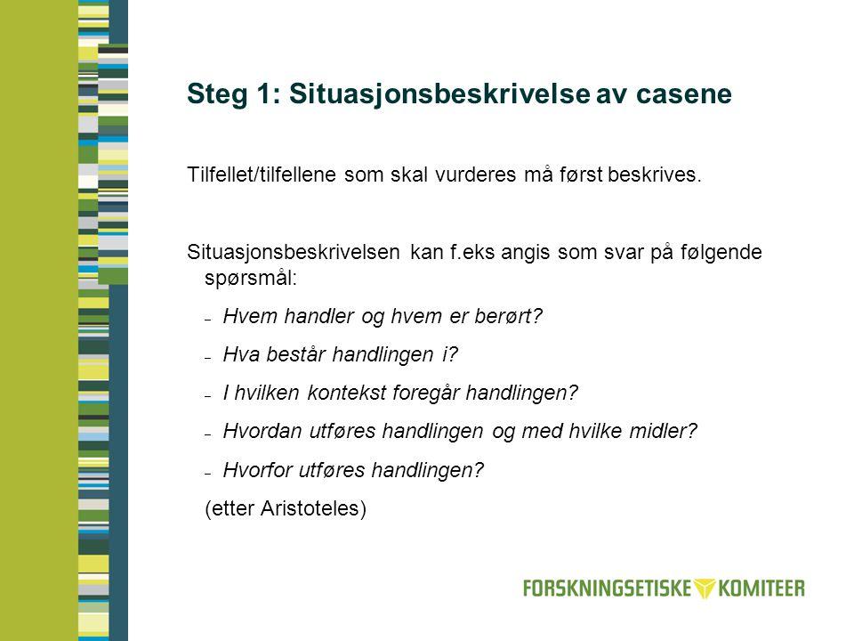 Steg 1: Situasjonsbeskrivelse av casene
