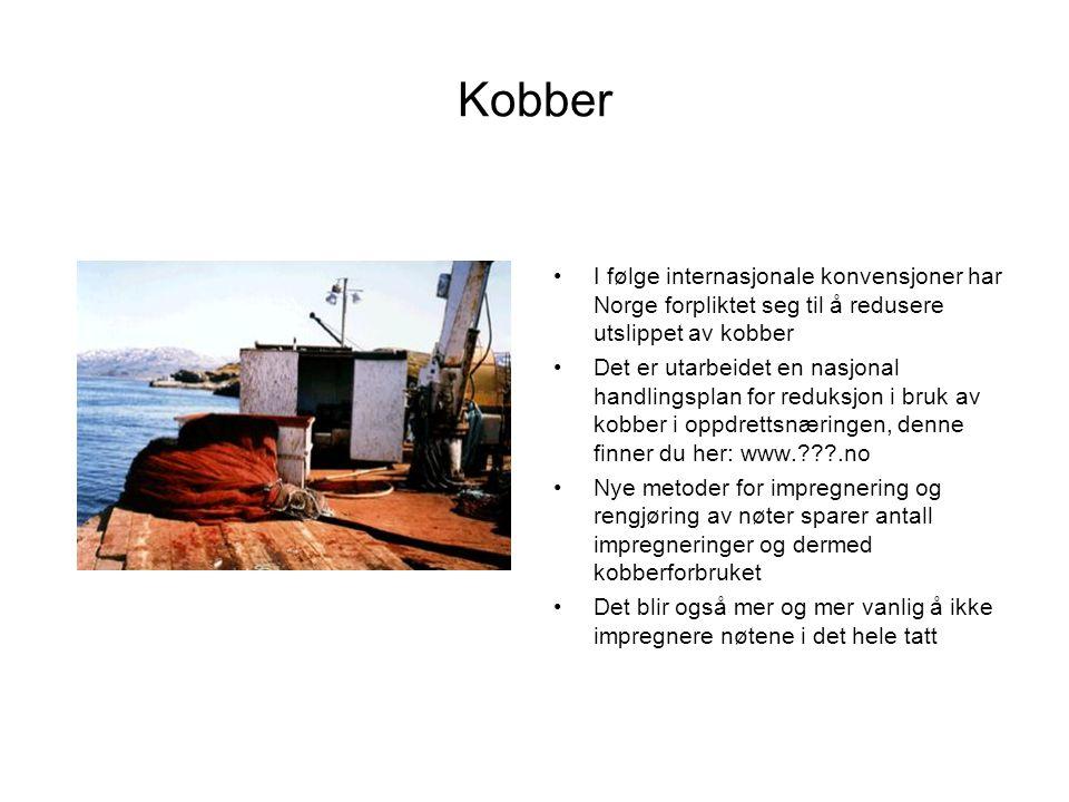 Kobber I følge internasjonale konvensjoner har Norge forpliktet seg til å redusere utslippet av kobber.