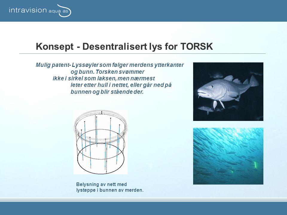 Konsept - Desentralisert lys for TORSK