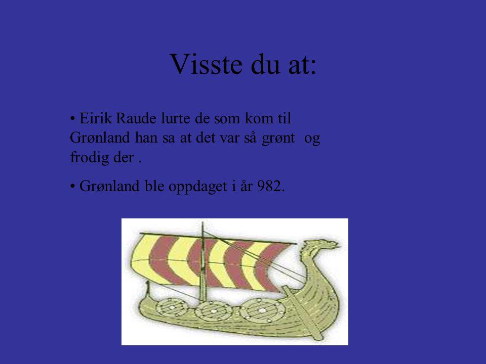 Visste du at: Eirik Raude lurte de som kom til Grønland han sa at det var så grønt og frodig der .