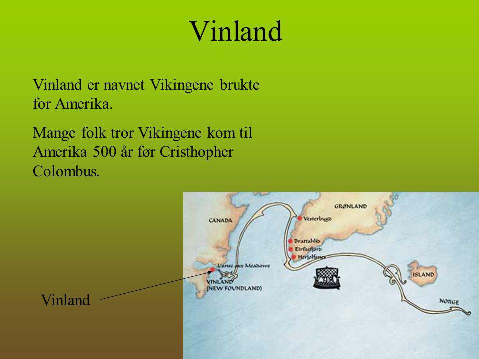 Vinland Vinland er navnet Vikingene brukte for Amerika.