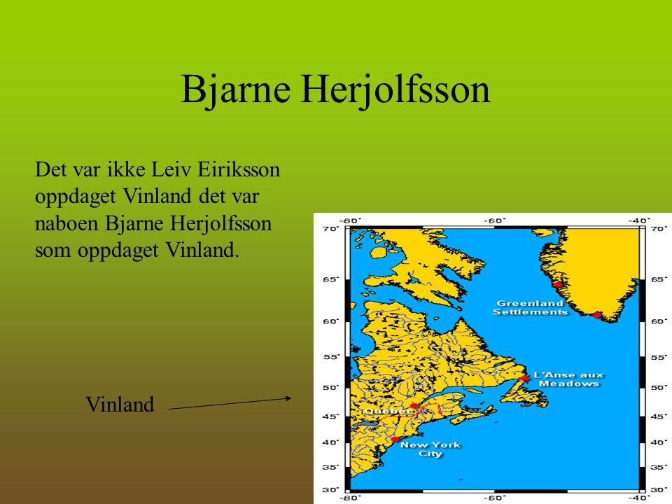 Bjarne Herjolfsson Det var ikke Leiv Eiriksson oppdaget Vinland det var naboen Bjarne Herjolfsson som oppdaget Vinland.