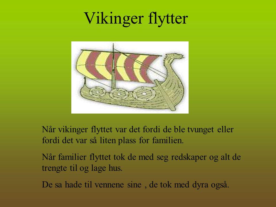 Vikinger flytter Når vikinger flyttet var det fordi de ble tvunget eller fordi det var så liten plass for familien.
