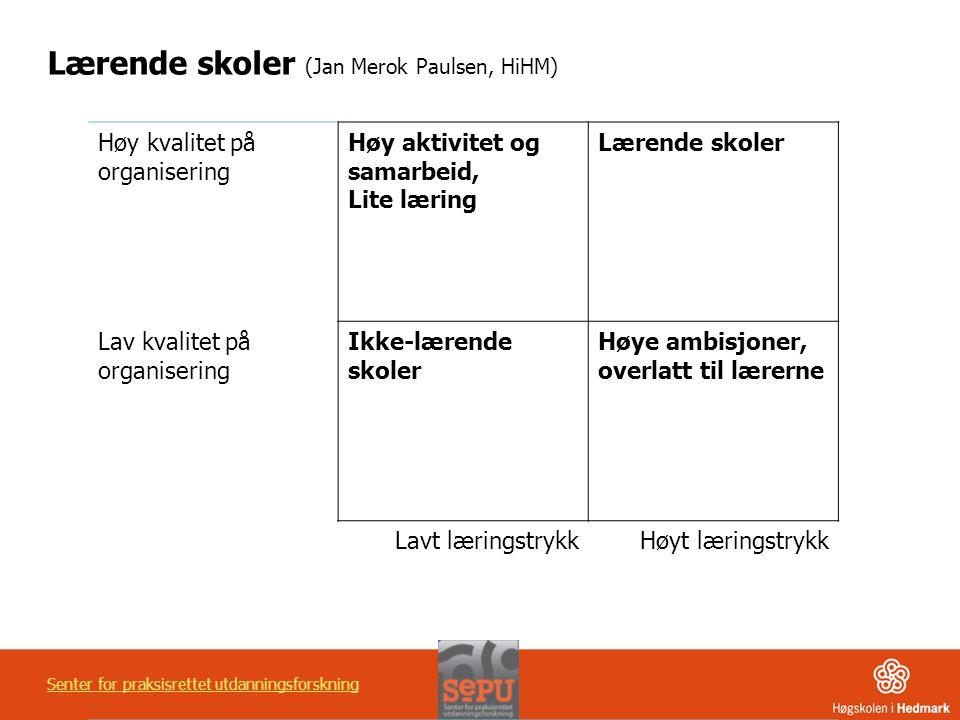 Lærende skoler (Jan Merok Paulsen, HiHM)