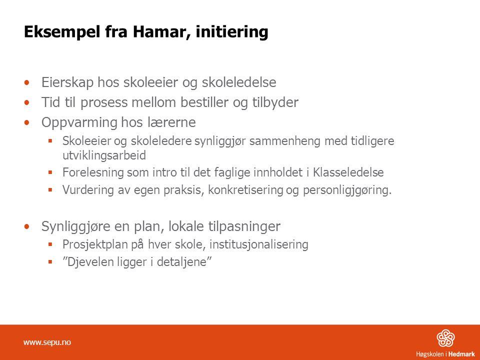 Eksempel fra Hamar, initiering