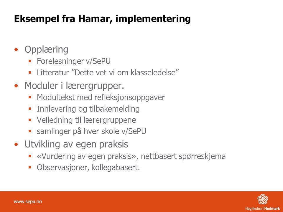 Eksempel fra Hamar, implementering