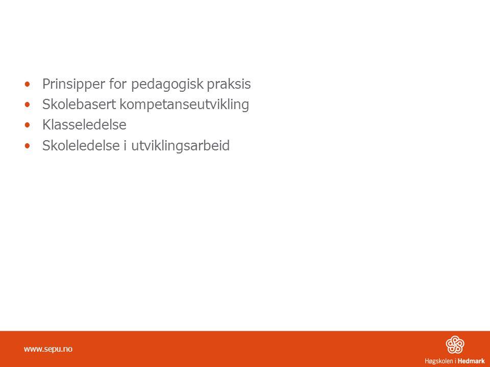Prinsipper for pedagogisk praksis Skolebasert kompetanseutvikling