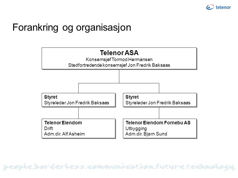 Forankring og organisasjon