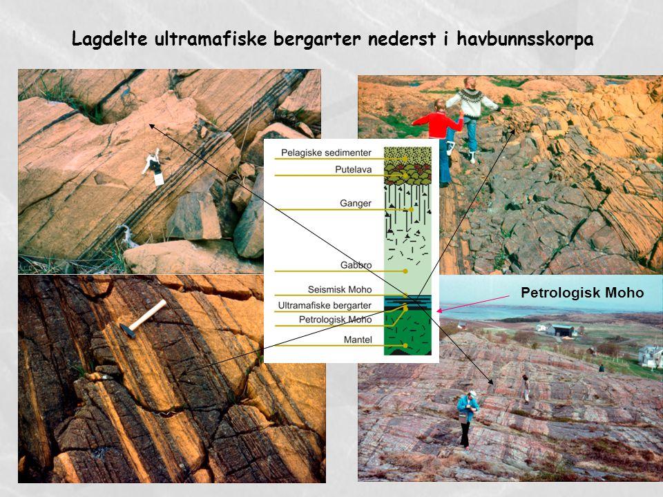 Lagdelte ultramafiske bergarter nederst i havbunnsskorpa