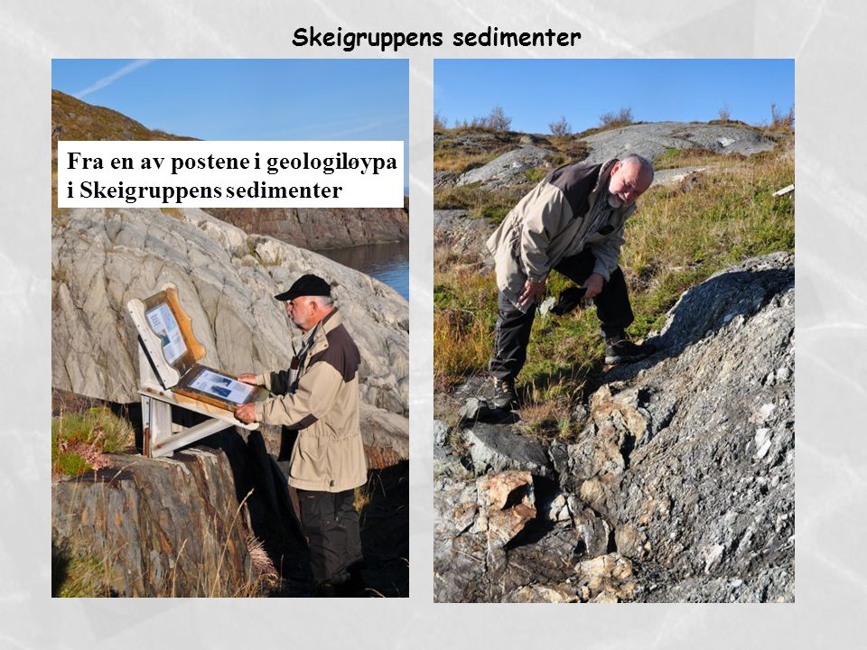 Skeigruppens sedimenter