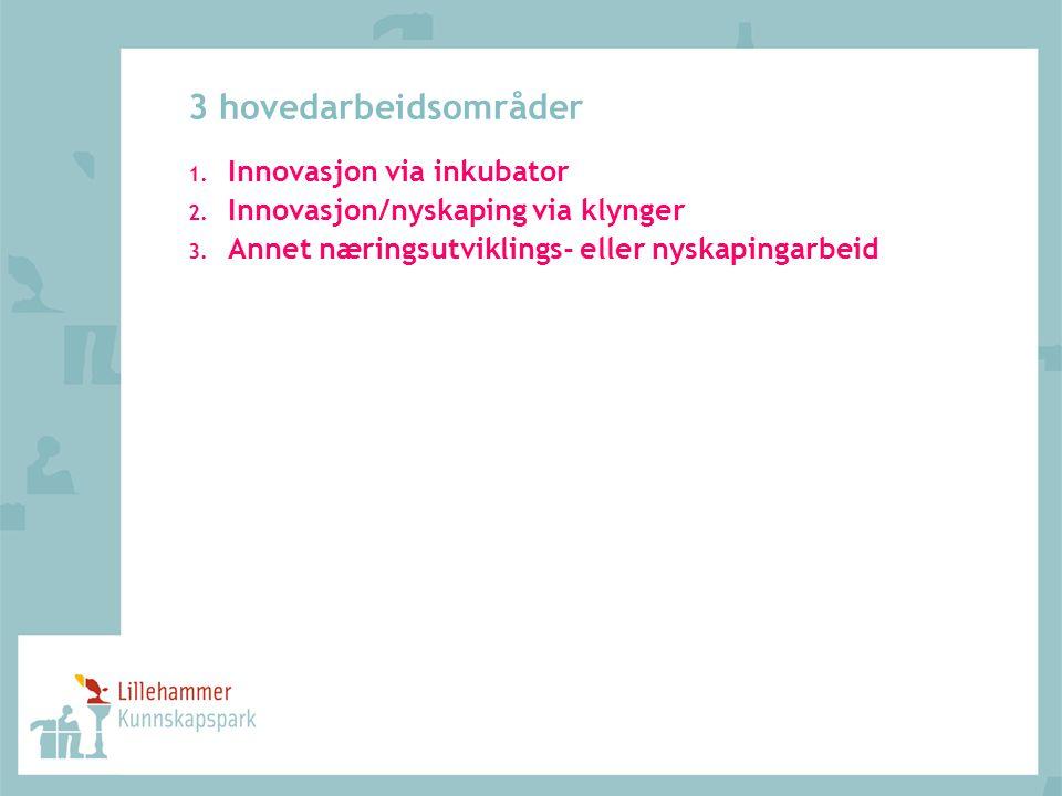 3 hovedarbeidsområder Innovasjon via inkubator