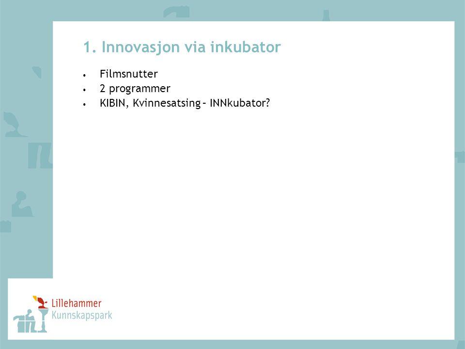 1. Innovasjon via inkubator