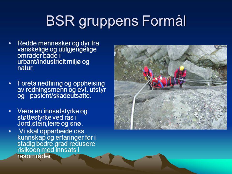 BSR gruppens Formål Redde mennesker og dyr fra vanskelige og utilgjengelige områder både i urbant/industrielt miljø og natur.